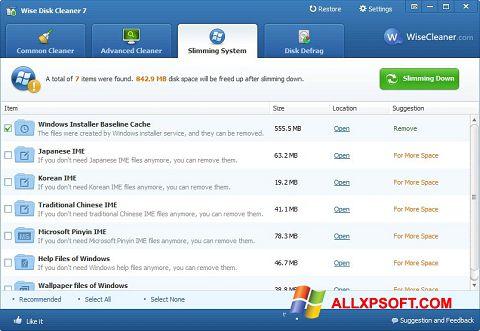 Petikan skrin Wise Disk Cleaner untuk Windows XP